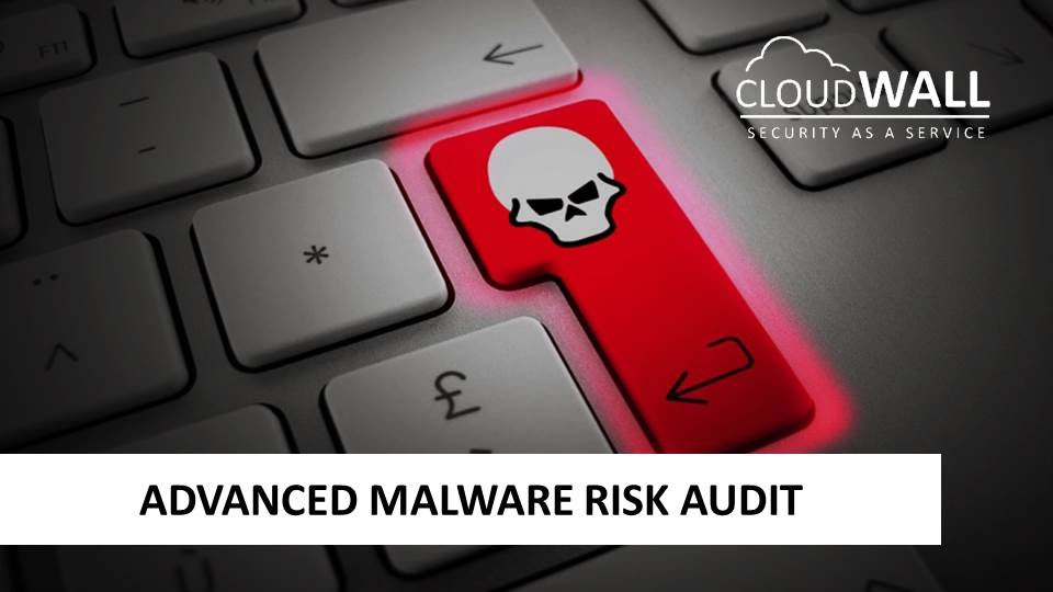 Advanced Malware Risk Audit