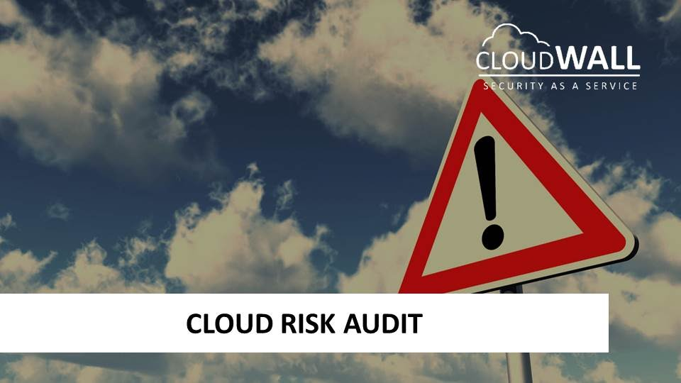 Cloud Risk Audit