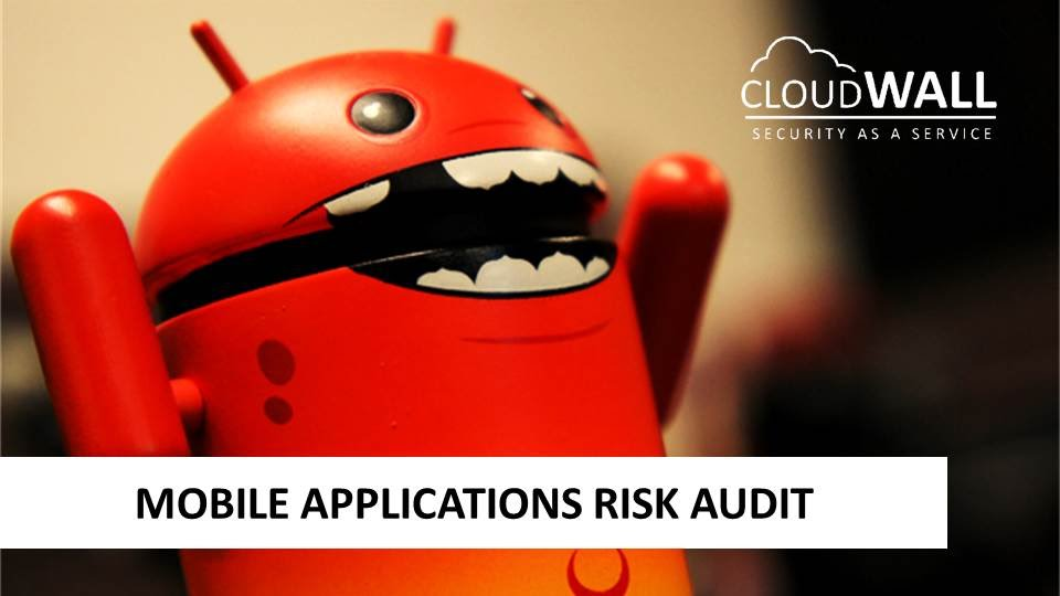 Mobile Application Risk Audit