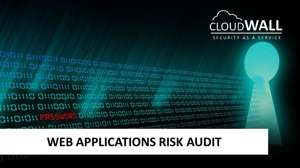 Web Application Risk Audit